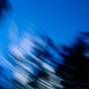 Blue Blur - Copyright © 2008 - Mark Atkins Photographer